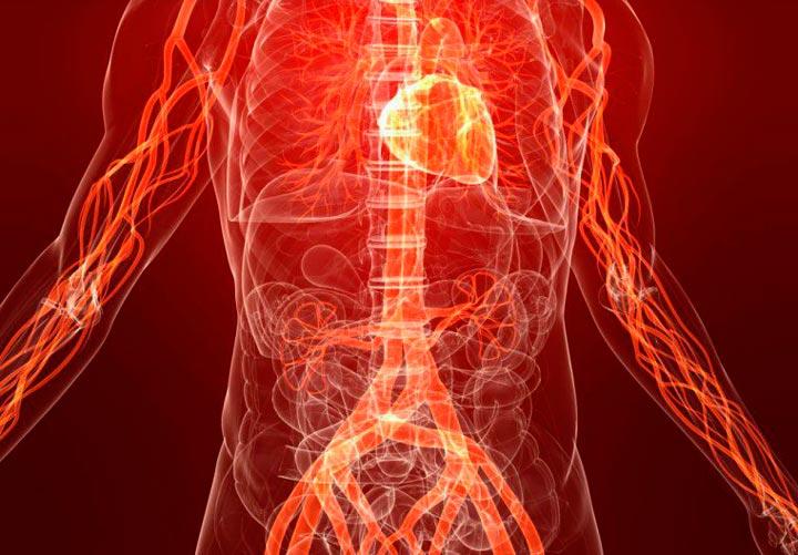 Улучшение кровообращения - основной плюс воротникового массажа