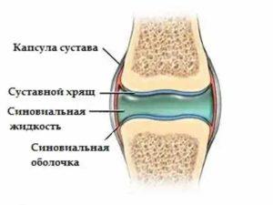 Схема изображения жидкости в колене