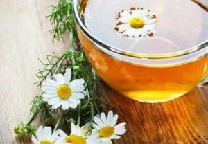 Как приготовить чай из ромашек