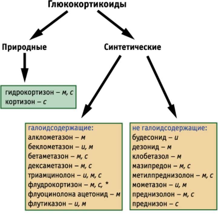 Схема кортикостероидов