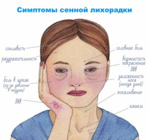 Схема приступов лихорадки