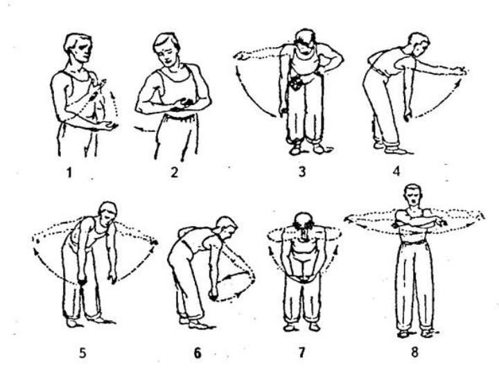 Упражнения Кинезотерапии для плечевого пояса