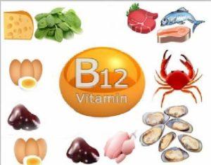 Источники витаминов В12
