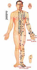 Карта тела для игл