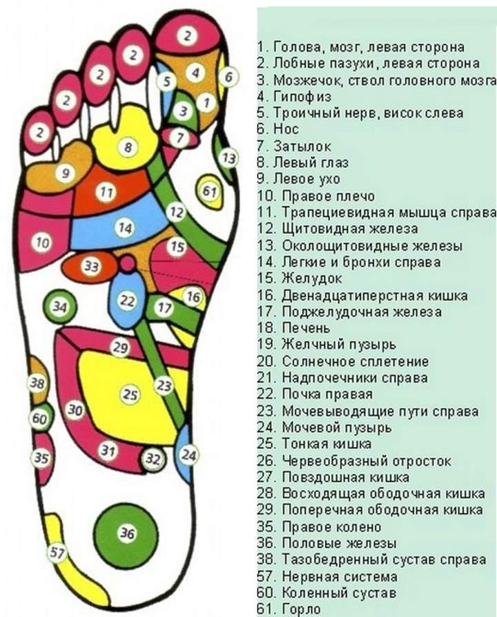 Список точек стопы