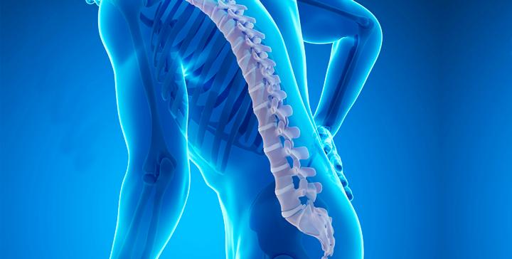 Терафлекс от остеопороза